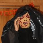 lemmin-halloween-239